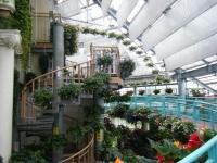 花と泉の公園2017-05-14ベゴニア館032