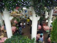 花と泉の公園2017-05-14ベゴニア館070