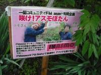花と泉の公園2017-05-14牡丹園079