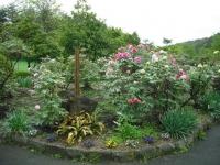 花と泉の公園2017-05-14牡丹園090