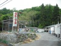 2017-05-24しろぷーうさぎ03