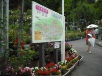 2017-06-11花巻温泉のバラ園002
