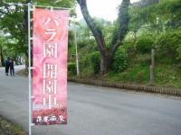 2017-06-11花巻温泉のバラ園001