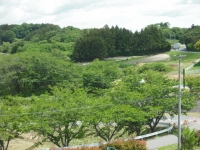 2017-06-17長沼フートピア公園021