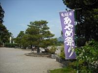 2017-06-24平泉・毛越寺あやめ祭り003