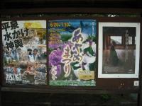 2017-06-24平泉・毛越寺あやめ祭り011