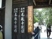 2017-06-24平泉・毛越寺あやめ祭り008