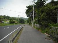 2017-06-28しろぷーうさぎ02