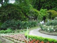 2017-06-11花巻温泉のバラ園080