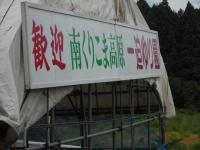 2017-07-01一迫町ユリ園002