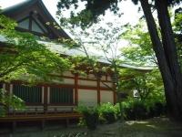 2017-06-24平泉・毛越寺あやめ祭り040