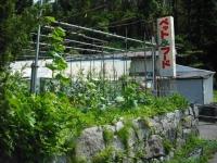 2017-07-07重箱石02
