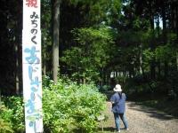 2017-07-08一関市舞川みちのくあじさい園001