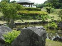 2017-06-17登米市南方花菖蒲の郷049