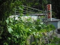 2017-07-11重箱石04