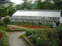 2017-06-11花巻温泉のバラ園098