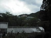 2017-06-11花巻温泉のバラ園097