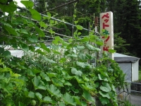 2017-07-17重箱石05