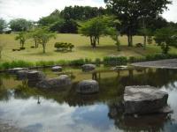 2017-06-17登米市南方花菖蒲の郷079