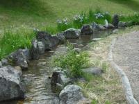2017-06-17登米市南方花菖蒲の郷085