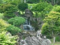 2017-06-17登米市南方花菖蒲の郷093