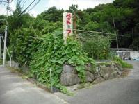 2017-08-01重箱石03
