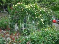 2017-06-11花巻温泉のバラ園141