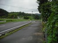 2017-08-07しろぷーうさぎ02