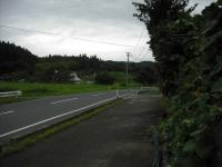 2017-08-09しろぷーうさぎ02