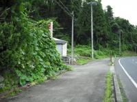 2017-08-10しろぷーうさぎ04
