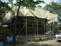 2017-06-24平泉・毛越寺あやめ祭り118