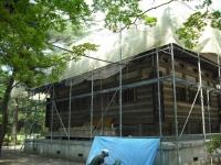 2017-06-24平泉・毛越寺あやめ祭り117