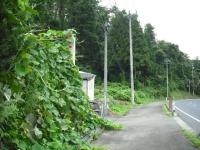 2017-08-14重箱石04