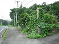 2017-08-14重箱石03