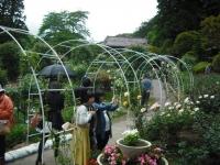 2017-06-11花巻温泉のバラ園162
