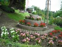 2017-06-11花巻温泉のバラ園161