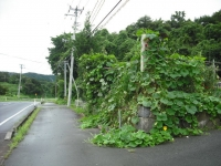 2017-08-18重箱石03
