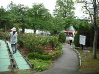 2017-06-11花巻温泉のバラ園176