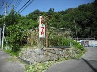 2017-09-01カラ&ミケ03