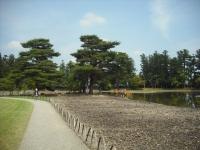 2017-06-24平泉・毛越寺あやめ祭り155