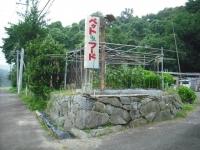 2017-09-06カラ&ミケ03