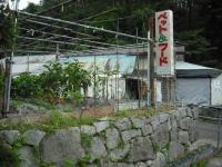 2017-09-07カラ&ミケ06