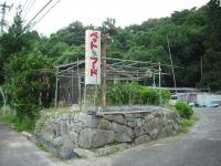 2017-09-07カラ&ミケ05