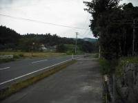 2017-09-11カラ&ミケ02