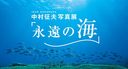 20170809nakamuraikuo8es_main_2017082413052812e.jpg