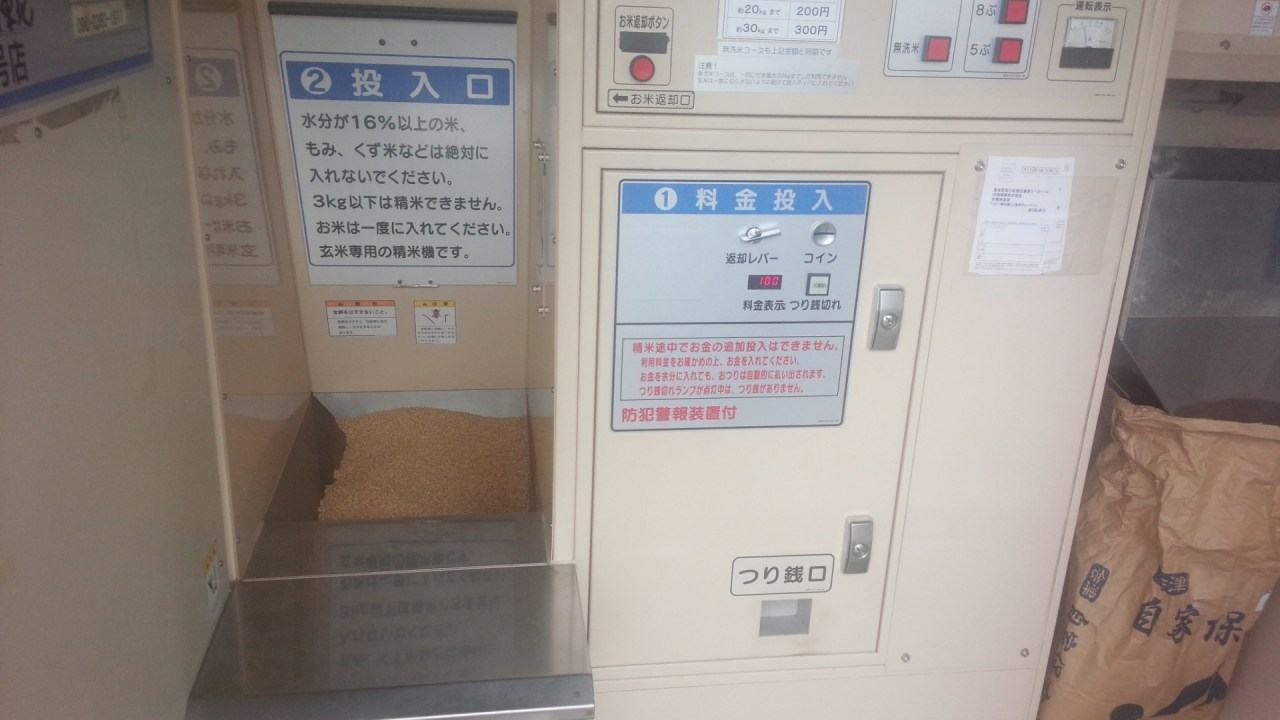 DSC_0098-s.jpg