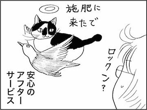 170514_170220_kaigetuRock_sehi.jpg