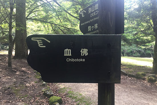 170521_chibotoke.jpg