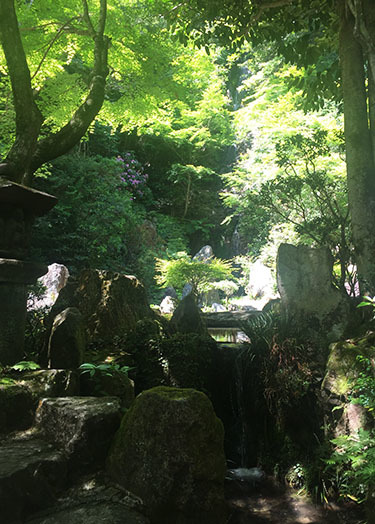170522_ninotaki.jpg