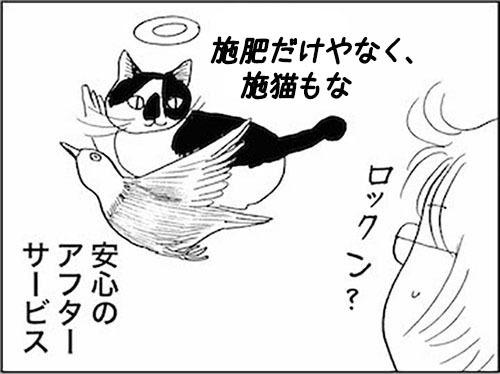 170610_170220_kaigetuRock_seneko.jpg